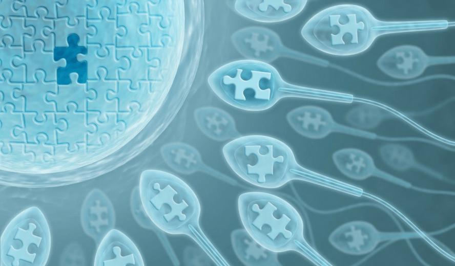 Reflexología para la Infertilidad: Descubre todos sus beneficios